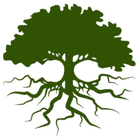 Endomaxx-Tree-Logo-480x480-jpeg-low